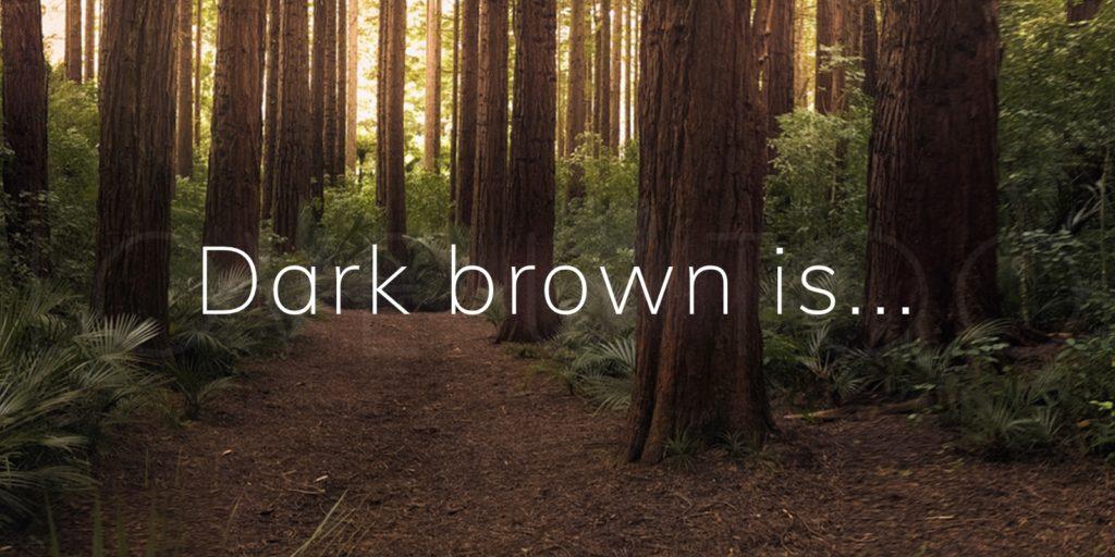 Dark brown is....